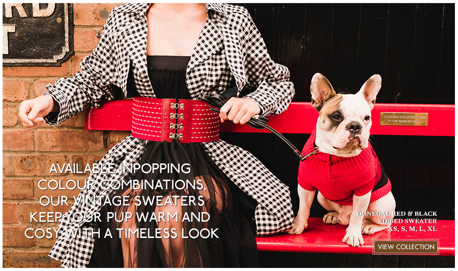 View Urban Pup Knitted Dog Sweaters. Comfortable fashions for Autumn & Winter