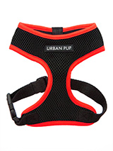 Active Mesh Neon Red Harness - Get fit, stay safe, stay seen. Treat your training buddy to an attractive new Active Mesh Harness with a dash of sporty neon to compliment your keep fit gear. But also great for regular walkies. High visibility Active Mesh Neon Harnesses provide the ultimate in comfort and safety, featuring a breath...